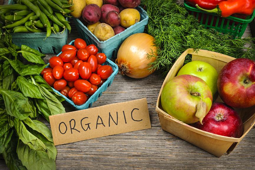 Resultado de imagem para organicos